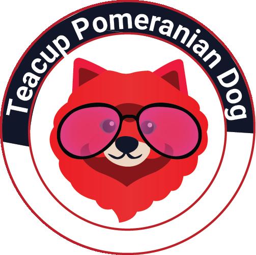teacup pomeranian dog logo