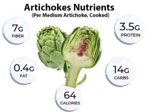 Artichokes Nutrients