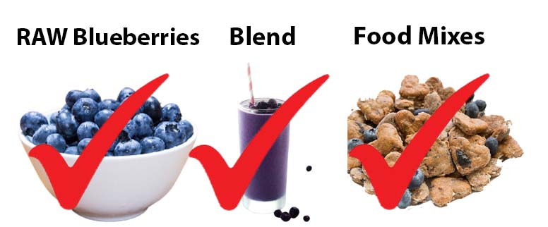 Different forms of Blue berries