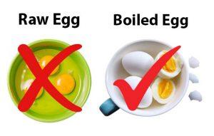 Raw Egg and Boiled Egg